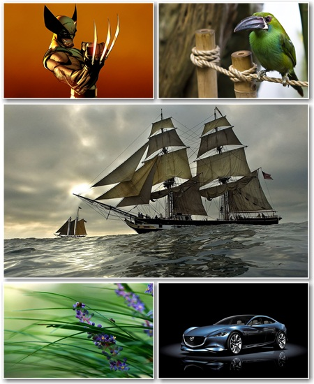 Best HD Wallpapers Pack №702
