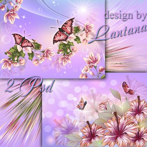 Psd исходники цветы и бабочки